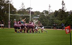 Scrum Rugby Union  Club Waitemata vs Waitakere City Stock Photography
