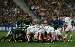 Scrum for South Africa Royalty Free Stock Photo