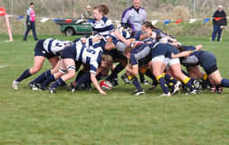 A Scrum in a Women's College Rugby Match. A scrum in a women's collegiate rugby match between Navy and the Brigham Young University (BYU) Cougars in the NCAA Royalty Free Stock Images