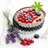 Scrumptious red currant and blueberry tart Stock Image