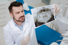 Scrupulous private dentist diagnosing his patient Royalty Free Stock Photo