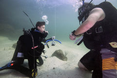Scuba Dive Certification - Facemask Removal. A 12-year old boy scuba diving student performs the facemask removal task for the scuba instructor on the bottom at royalty free stock photo