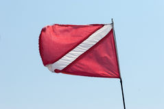 Scuba Dive Flag Stock Image