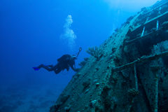 Scuba Diver. Around Wreck, Red sea royalty free stock image