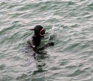 Scuba Diver. In Monterey Bay, California Royalty Free Stock Photos