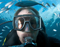 Scuba Diver Royalty Free Stock Image