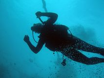 Scuba diver. Going down Stock Photography