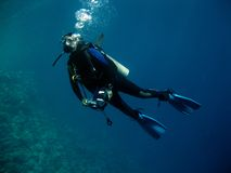Scuba Diver. Dive master in open water, Full length wet suit and underwater camera equipment royalty free stock photos