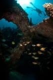 Scuba diver above shipwreck royalty free stock photos