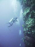 Scuba diver against cliff. Scuba diver against steep underwater wall and air bubbles stock photo