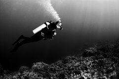 Scuba diver in black and white Stock Photo