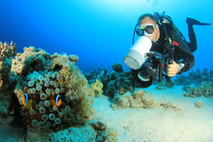 Scuba Diver with Camera Royalty Free Stock Image