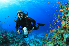 Scuba Diver with Camera Royalty Free Stock Photography