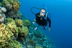 Scuba diver on a coral reef Royalty Free Stock Photo
