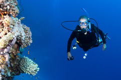 Scuba diver on a coral reef Royalty Free Stock Images