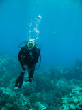 Scuba diver and coral reef Royalty Free Stock Photography