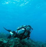 Scuba diver and coral reef Stock Photography