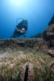 Scuba Diver in deep water. A female scuba diver is swimming underwater royalty free stock photography
