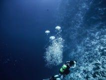 Scuba diver descending to the bottom stock photo