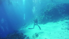 Scuba diver entering an underwater cave. Red Sea, Egypt. stock video footage