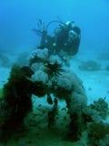 Scuba diver exploring zero wreckage philippines. Scuba diver explores wreckage of world war 2 japanese zero fighter in sabang puerto galera mindoro the Stock Image