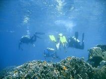 Scuba diver group lesson Stock Photo