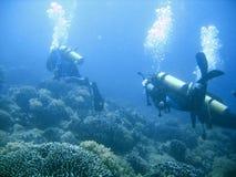 Scuba diver group lesson Stock Photography