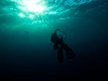 SCUBA diver heads to the surface Stock Photo