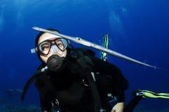 Scuba diver looks at cornet fish Royalty Free Stock Photos