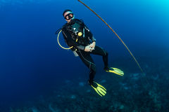 SCUBA diver next to a descent line Royalty Free Stock Image