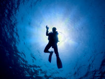 Scuba diver in the red sea giving the OK sign Royalty Free Stock Photos