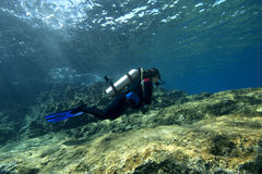 Scuba-Diver in shallow water. A feamle scuba diver is exploring an underwater reef landscape in shallow water. turkish sea royalty free stock images