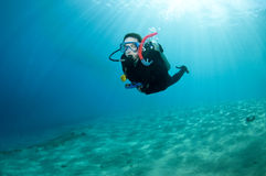 Scuba diver in shallow water Royalty Free Stock Images