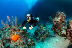 SCUBA Diver in sidemount on a reef Stock Photography