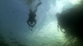 Scuba diver silhouette on background of reflection sunlight underwater. Amazing unique beautiful video. Relax stock video footage