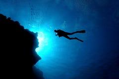 Scuba Diver Silhouette - Cozumel, Mexico. Silhouette of Scuba Diver with School of Small Fish - Cozumel, Mexico Stock Photos
