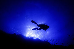 Scuba Diver Silhoutte at Elphinstone Reef. A back lit shot of a scuba diver at the egyptian Elphinestone reef Royalty Free Stock Photography