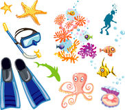 Scuba diver and  snorkel equipment, corals, sea sh. Bunch of scuba diver and  snorkel equipment, corals, sea shell with pearl, tropical fishes, shark and diver Stock Images