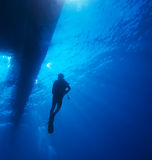 Scuba Diver with Sun Rays Stock Image