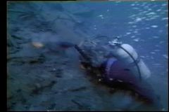 Scuba diver swimming at bottom of river stock video footage
