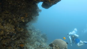 Scuba diver swimming towards a coral reef. A full shot of a scuba diver swimming towards a coral reef stock footage