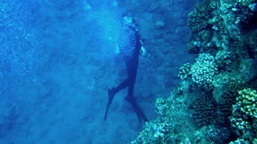 Scuba Diver Swimming at Tropical Reef HD stock video