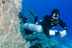 Side mount scuba diver Royalty Free Stock Photo