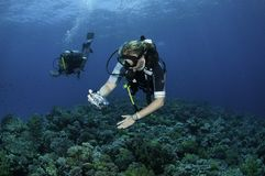 Scuba diver takes photo Stock Photos