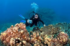 Scuba Diver taking pictures on a Hawaiian Reef Royalty Free Stock Image