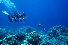 Scuba diver takes Underwater photo Stock Photos