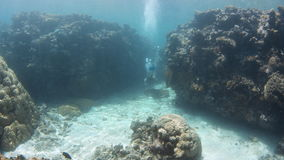 Scuba diver trying to go over a huge coral reef. A wide shot of the blue seabed with scuba diver trying to go over the coral reef stock video