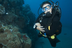 Scuba diver under the water Royalty Free Stock Photos