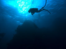 Scuba diver underwater Royalty Free Stock Image