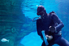 Scuba diver underwater near to sunken sailing ship in oceanarium Stock Images
